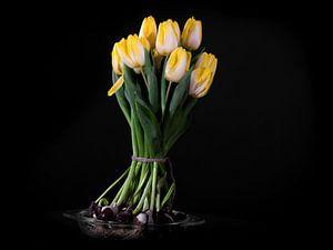 Blühender Blumenstrauß aus gelben Tulpenzwiebeln