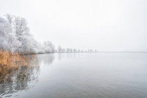 Witte natuur van Robbert Ladan