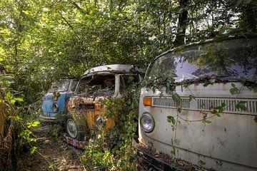 transporteur Volkswagen sur Kristof Ven