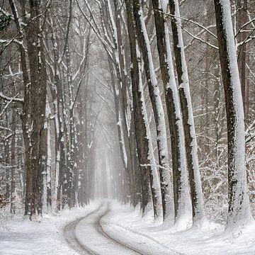 Hollandse Winter van Lars van de Goor