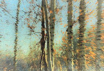 Abstracte berken van Diana Mets