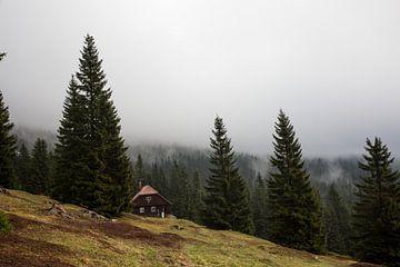 boshut van Sergej Nickel