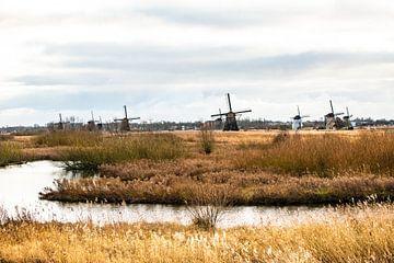 Kinderdijk Windmolenpark van Brian Morgan