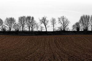 Limburgse akker