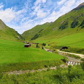 Malga Fane - de Fanealm in Zuid-Tirol van Reiner Würz / RWFotoArt