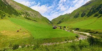 Malga Fane - de Fanealm in Zuid-Tirol
