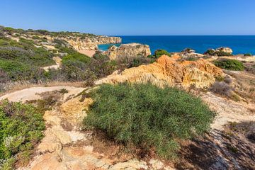 Felsen und Berge mit Vegetation auf der Küste in der Algarve Portugal von