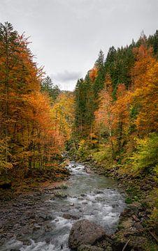 Herfstkleuren langs de rivier in Bayern