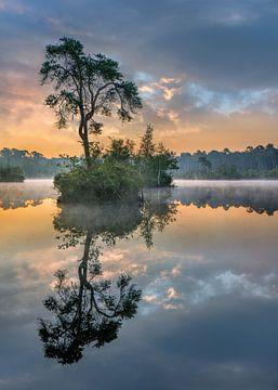 Orange und Türkis Sonne spiegelt sich in einem See von Tony Vingerhoets
