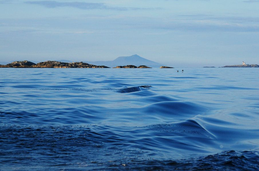 Varen op de zee in Noorwegen