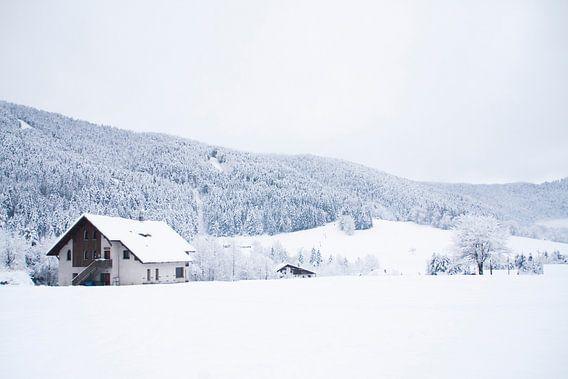 De Chartreuse in Frankrijk in de winter