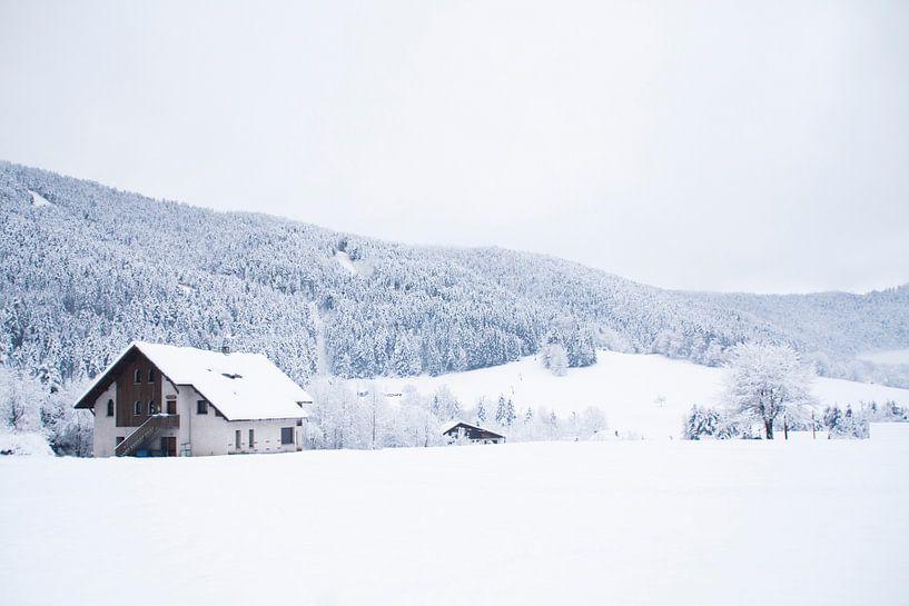 De Chartreuse in Frankrijk in de winter van Rosanne Langenberg