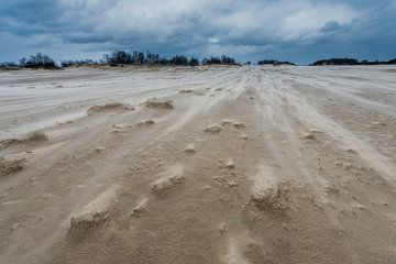 Sturm – Nationalpark De Loonse en Drunense Duinen von Laura Vink