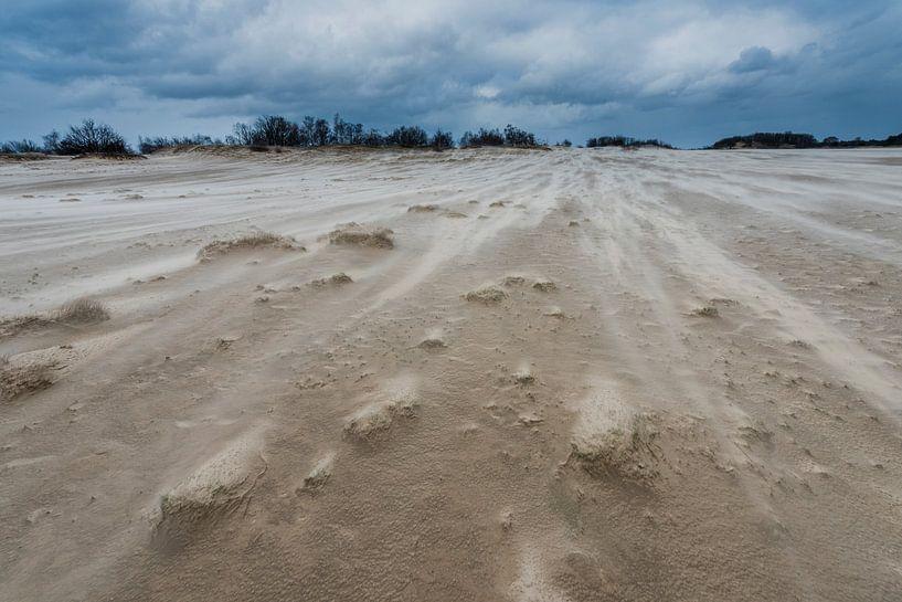 Storm - Loonse en Drunense Duinen van Laura Vink