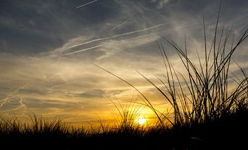 Sonnenuntergang in den Sanddünen am Strand sur Marcel van den Bos