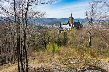 Blick auf das Schloß Wernigerode im Harz von Rico Ködder