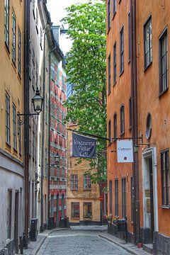 Straat in Stockholm van Ron de Regt