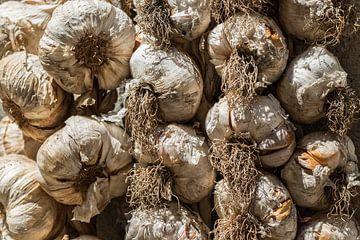 Garlic von Martijn Hinrichs