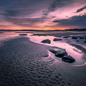 Purple morning van Niels Barto