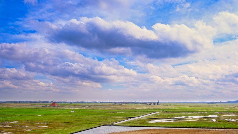 Water en het landschap de Harger- en Pettemerpolder van eric van der eijk