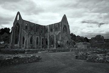 Tintern Abbey von Carole Winchester