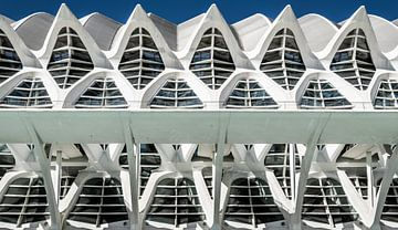 Stadt der Künste und Wissenschaften, Valencia von Stefan Vlieger
