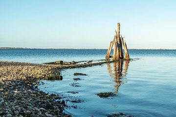 Grevelingenmeer mit verwittertem Holzobjekt von Helene van Rijn