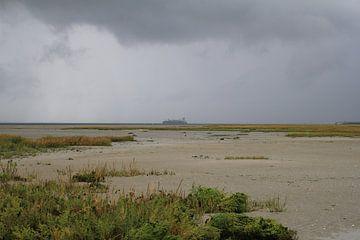 das Salzwiesengebiet entlang der West-Schelde bei Ebbe im Winter an einem stürmischen Tag. von Angelique Nijssen