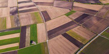 Vlucht over velden op de Zwabische Alb van Werner Dieterich