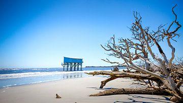 Huis in de zee met dode bomen von Karel Pops