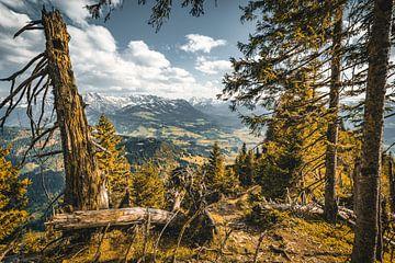 Ausblick Allgäuer Alpen von MindScape Photography