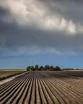 Lijnenpatroon aan de Friese Bildtdijk van
