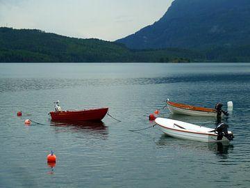 Möwen mit Booten van Annette Mertens
