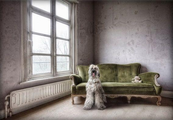 Dogfaith van Marcel van Balken