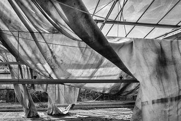 Schatten Tuch im Gewächshaus von Eugene Winthagen