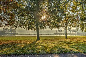 Rotterdam: Herfst bij de Kralingse Plas
