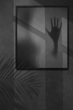 Shadows of Shadows von Marja van den Hurk