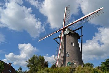 Salm-Salm-Mühle in Hoogstraten (Belgien) von Rob Pols