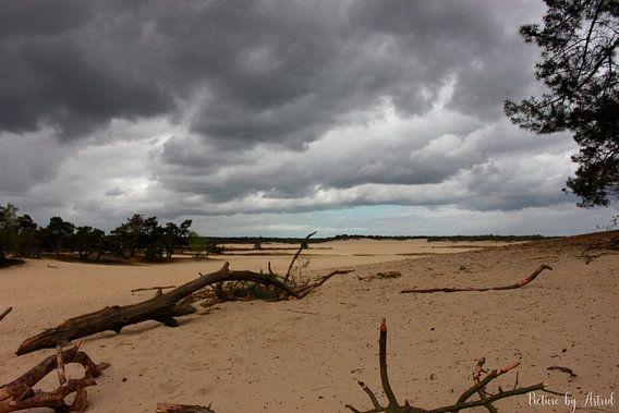 Landschap; Dreigende luchten in de duinen