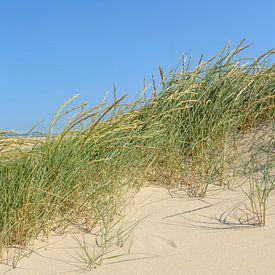 Vue panoramique de la plage en été sur la mer du Nord sur Sjoerd van der Wal