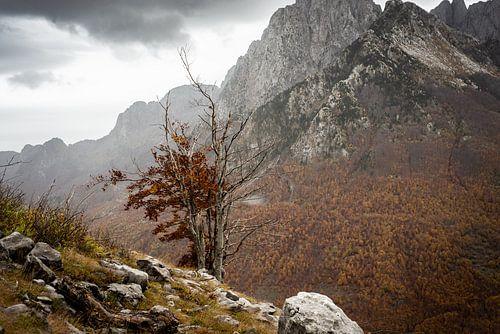 Herfst in de bergen van Albanie