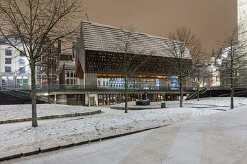 Bij sneeuwval het Stadhuis van Gent van Marcel Derweduwen