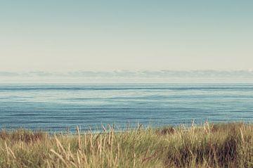 Texel zee van Nancy van Verseveld