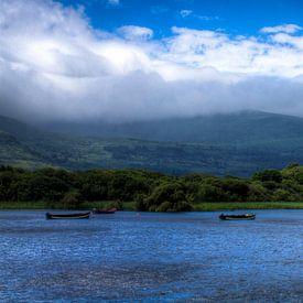 Lough Leane, Killarney National Park, Ireland van Colin van der Bel