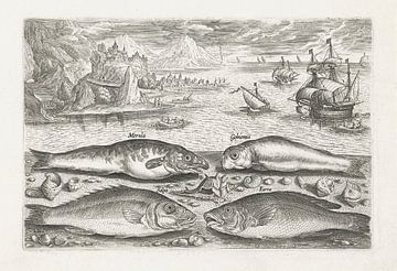 Vier Fische am Strand von Adriaen Collaert, nach 1595 - 1618