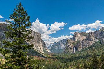 Tunnel view, Yosemite National Park van Peter Leenen