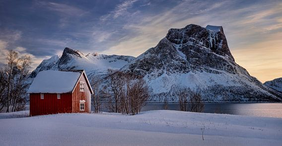 Red cabin in snow at Steinfjorden with frozen mountains in background, Senja, Norway