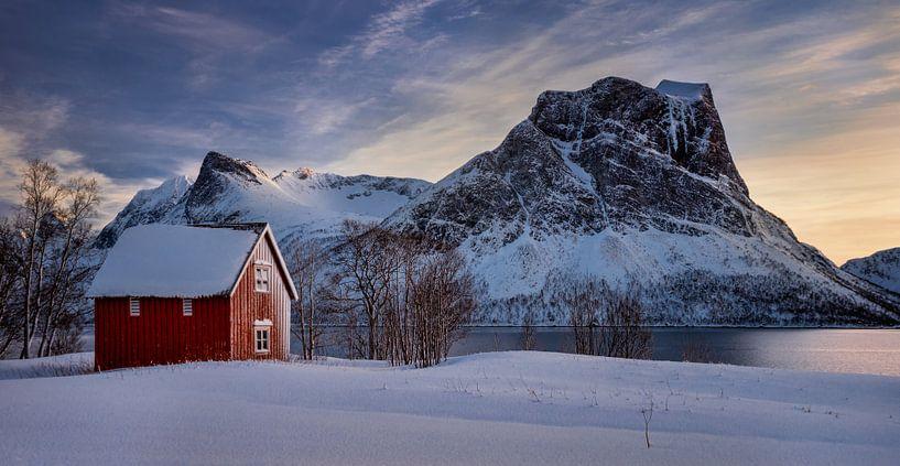 Red cabin in snow at Steinfjorden with frozen mountains in background, Senja, Norway van Wojciech Kruczynski