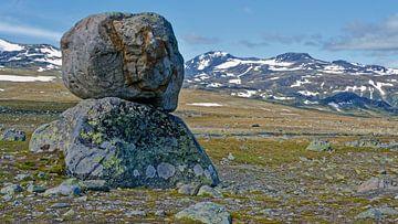 Norwegen, Norway, Valdresflye van Michael Schreier