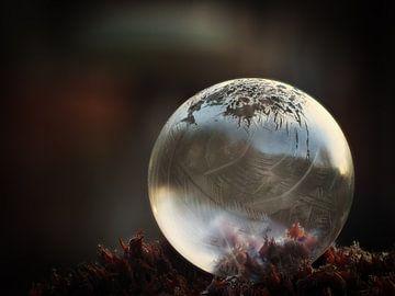 Bevroren zeepbel #2 van Lex Schulte